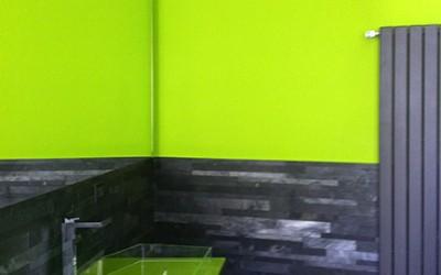 Ripristino locali sanitari Ripristino bagni con complementi di design, e laccatura delle pareti con smalto all'acqua.